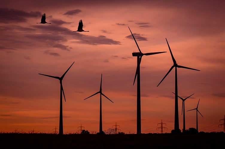 Energías Renovables: Proyectos para extender su implementación en Argentina